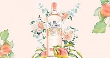 Gordon's WHITE PEACH Distilled Gin 37,5%, Volume - 0.7 l - 2