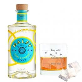 Malfy Gin Con Limone mit graviertem Tumblerglas, italienischer Gin mit Zitrone, Alkohol, Schnaps, Flasche, 41%, 700 ml - 1